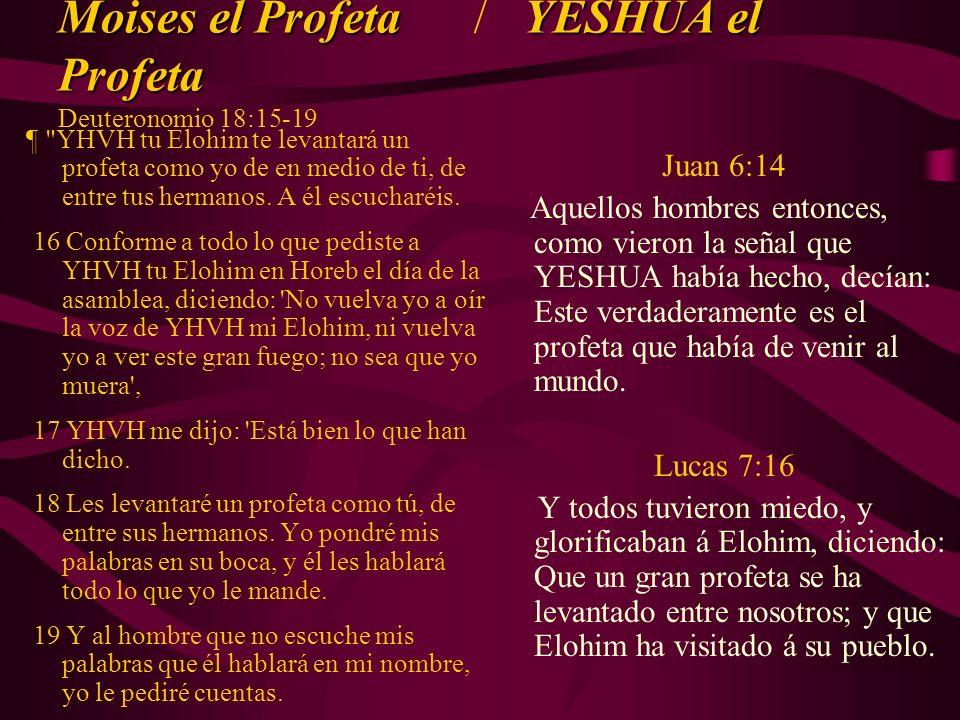 Moises el Profeta / YESHUA el Profeta Deuteronomio 18:15-19
