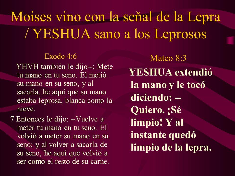 Moises vino con la seňal de la Lepra / YESHUA sano a los Leprosos