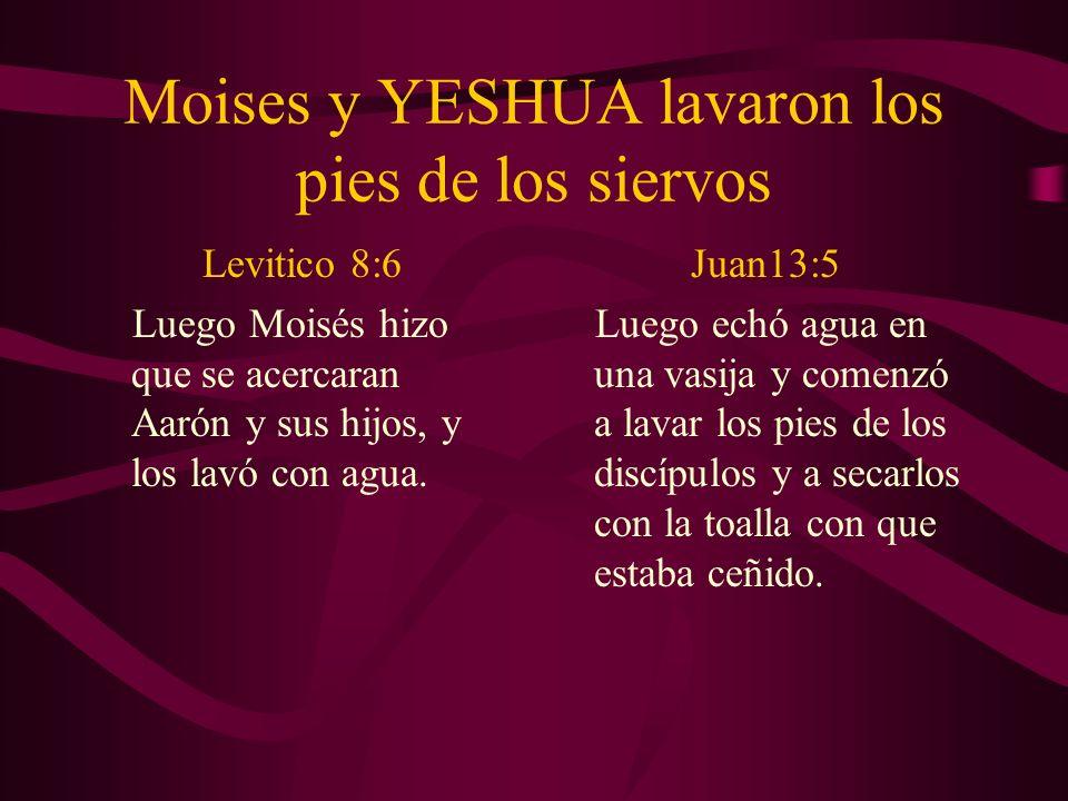 Moises y YESHUA lavaron los pies de los siervos