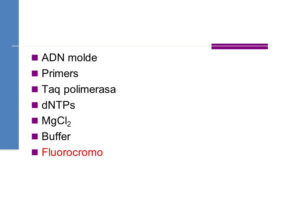ADN molde Primers Taq polimerasa dNTPs MgCl2 Buffer Fluorocromo