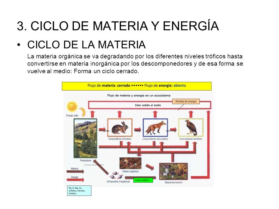 3. CICLO DE MATERIA Y ENERGÍA