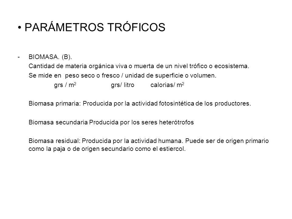 PARÁMETROS TRÓFICOS BIOMASA. (B).