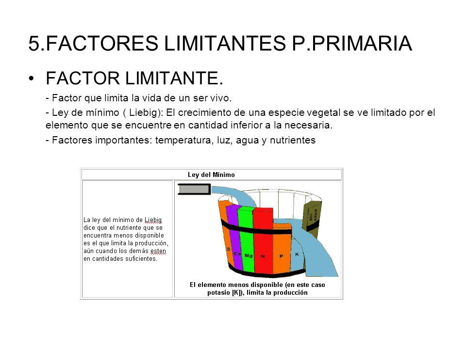 5.FACTORES LIMITANTES P.PRIMARIA