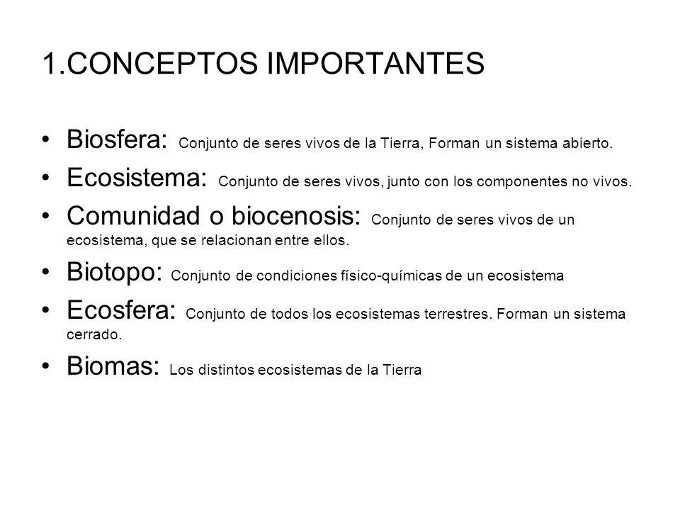 1.CONCEPTOS IMPORTANTES