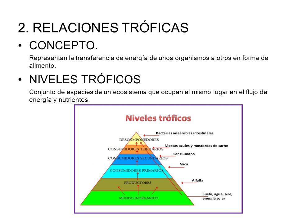 2. RELACIONES TRÓFICAS CONCEPTO. NIVELES TRÓFICOS