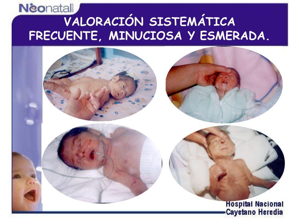 VALORACIÓN SISTEMÁTICA FRECUENTE, MINUCIOSA Y ESMERADA.