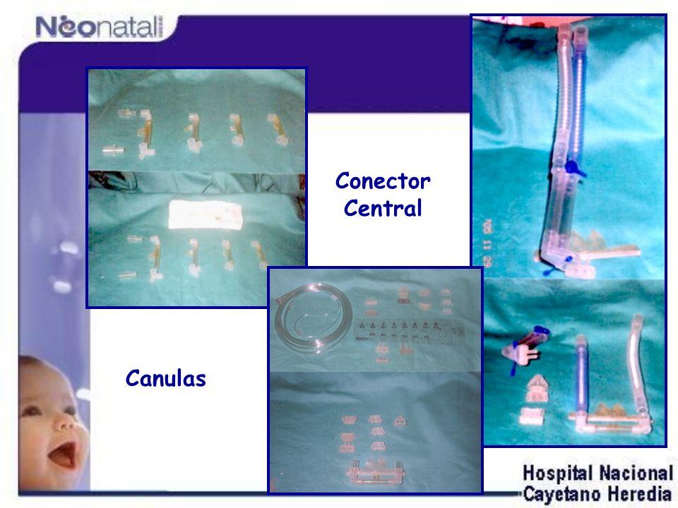 Conector Central Canulas