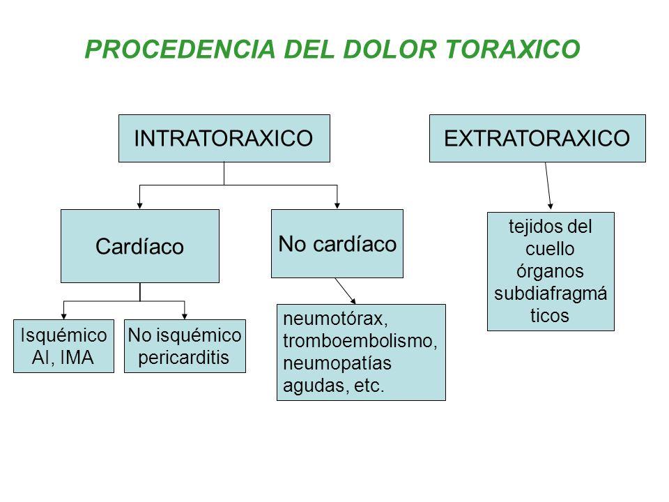 PROCEDENCIA DEL DOLOR TORAXICO