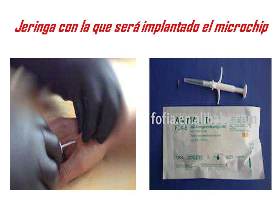 Jeringa con la que será implantado el microchip