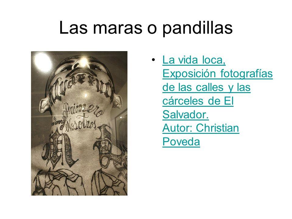 Las maras o pandillasLa vida loca, Exposición fotografías de las calles y las cárceles de El Salvador.