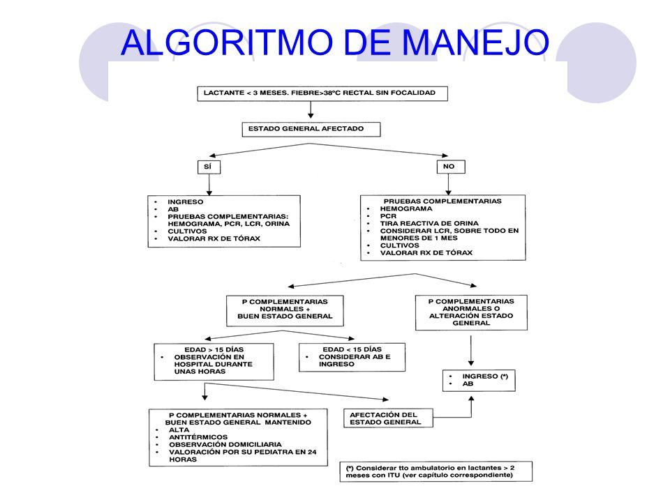 ALGORITMO DE MANEJO