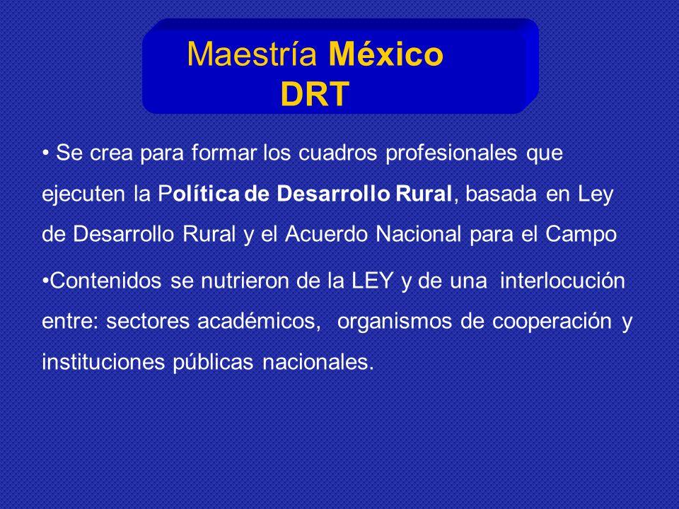 Maestría México DRT
