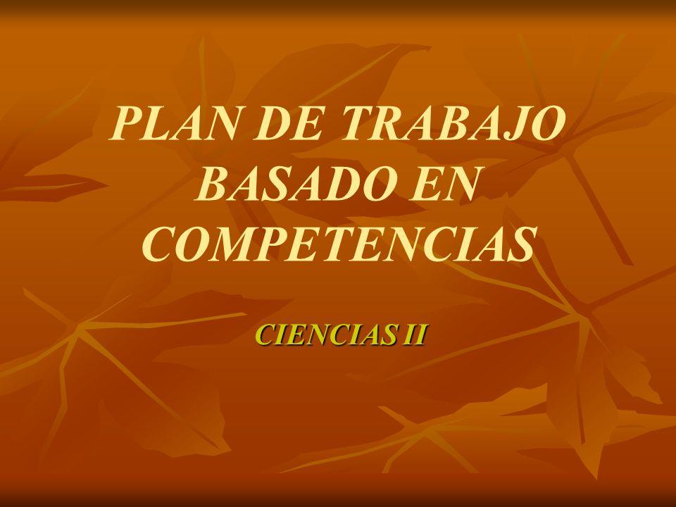 PLAN DE TRABAJO BASADO EN COMPETENCIAS