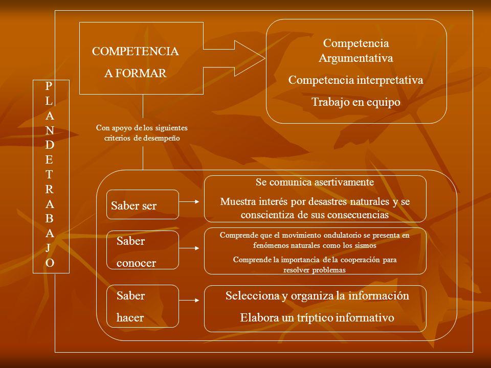 Competencia Argumentativa Competencia interpretativa Trabajo en equipo