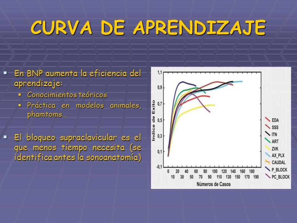 CURVA DE APRENDIZAJE En BNP aumenta la eficiencia del aprendizaje: