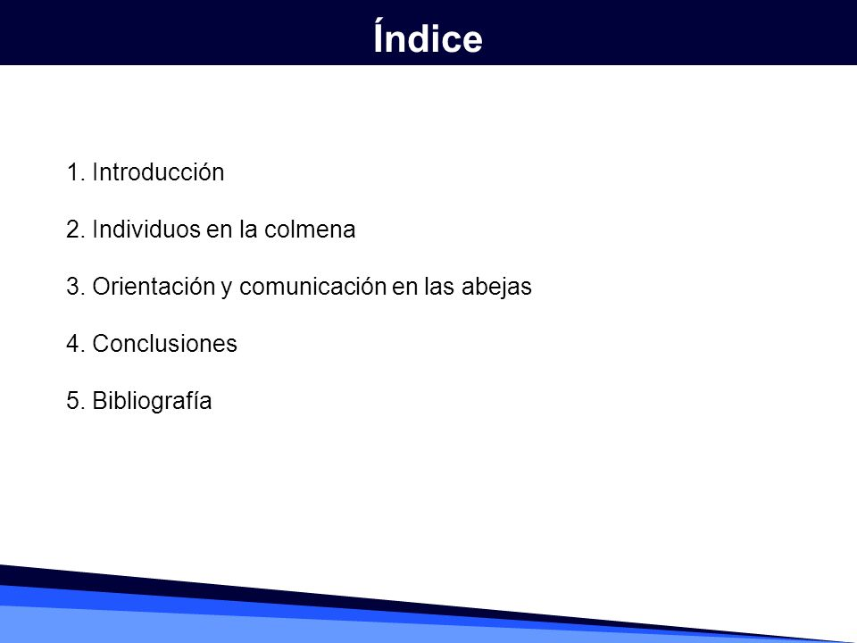 Índice 1. Introducción 2. Individuos en la colmena