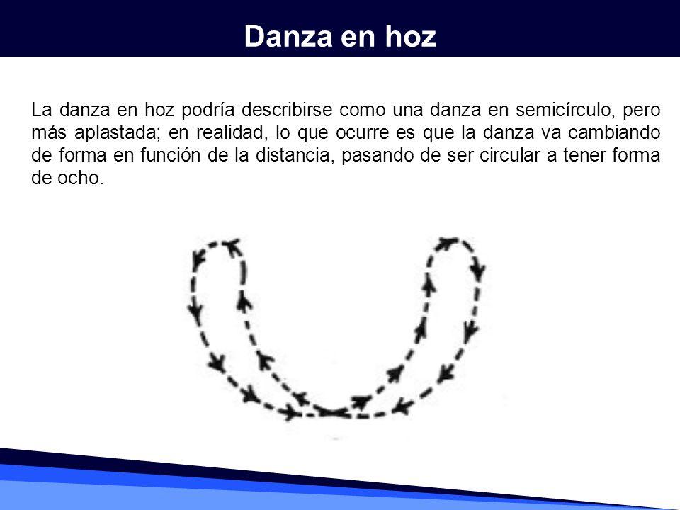 Danza en hoz