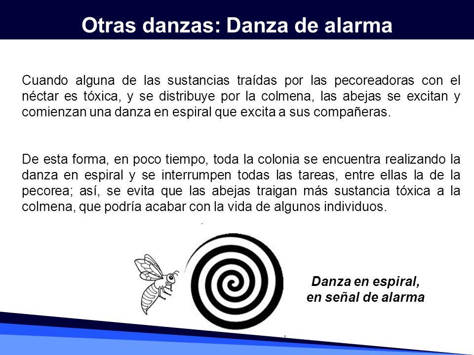 Otras danzas: Danza de alarma Danza en espiral, en señal de alarma