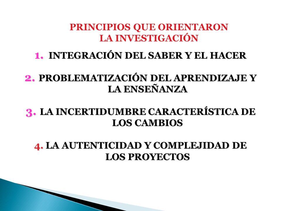 PRINCIPIOS QUE ORIENTARON LA INVESTIGACIÓN