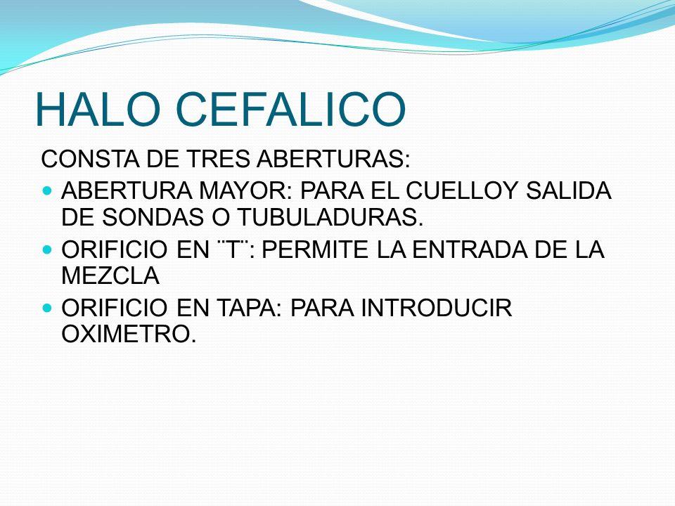HALO CEFALICO CONSTA DE TRES ABERTURAS: