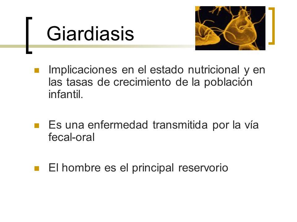 Giardiasis Implicaciones en el estado nutricional y en las tasas de crecimiento de la población infantil.