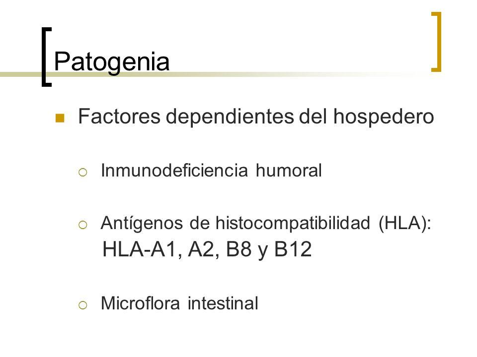 Patogenia Factores dependientes del hospedero HLA-A1, A2, B8 y B12