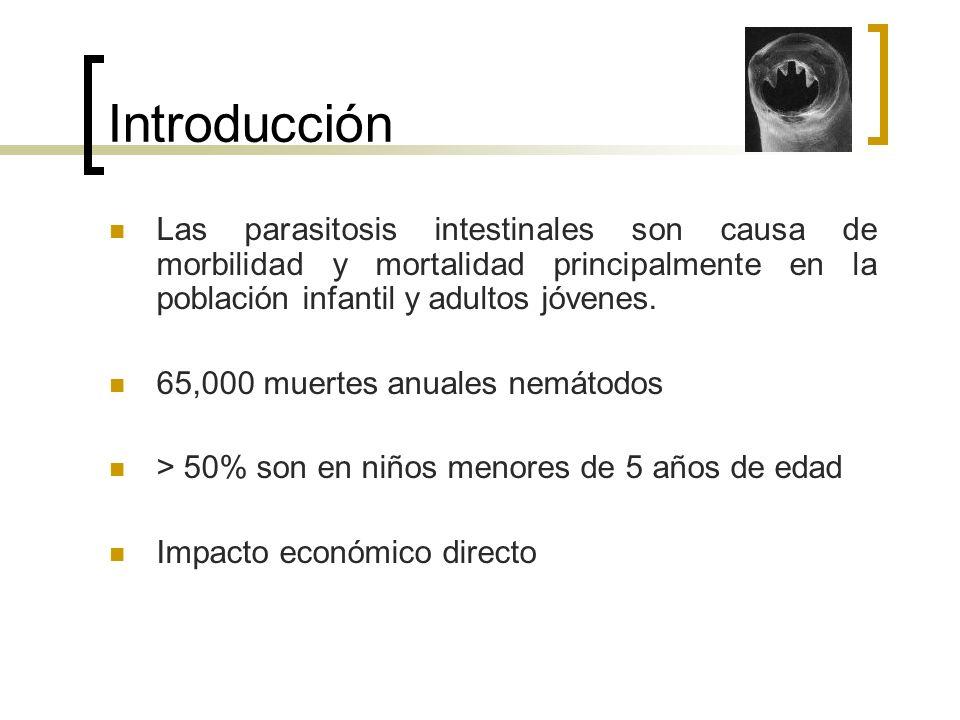 Introducción Las parasitosis intestinales son causa de morbilidad y mortalidad principalmente en la población infantil y adultos jóvenes.
