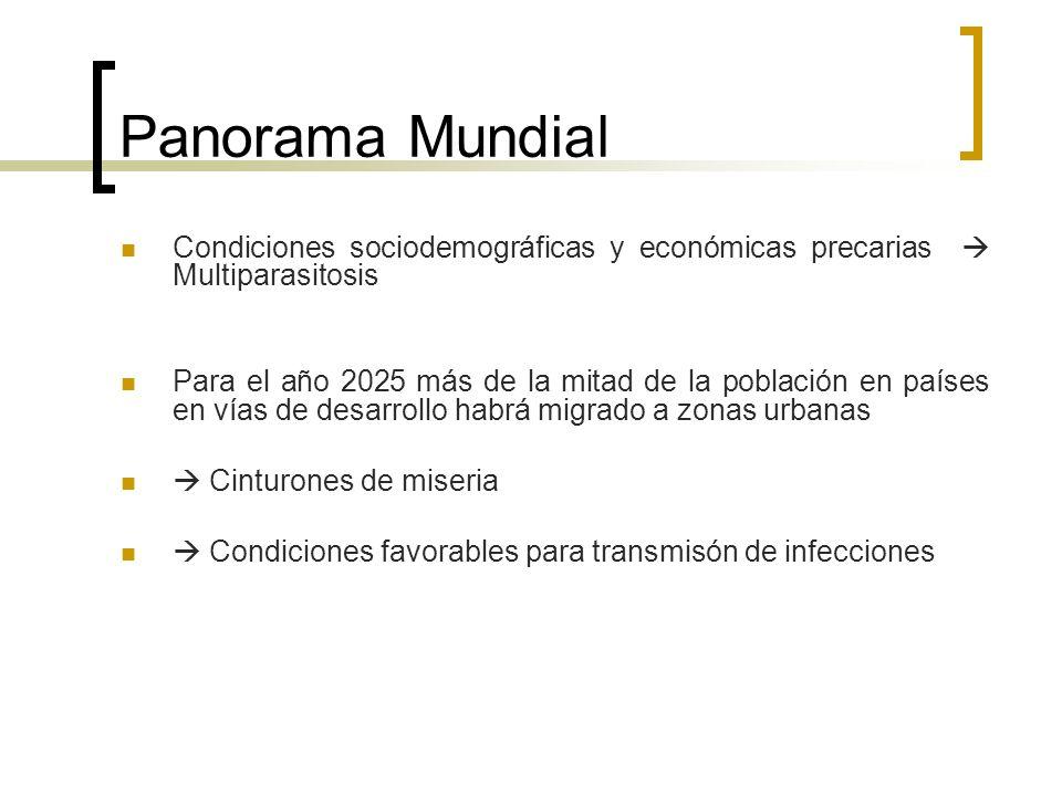 Panorama MundialCondiciones sociodemográficas y económicas precarias  Multiparasitosis.
