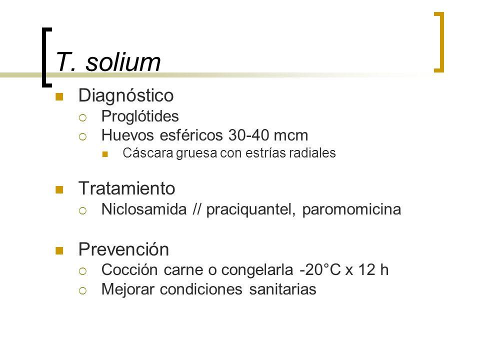 T. solium Diagnóstico Tratamiento Prevención Proglótides