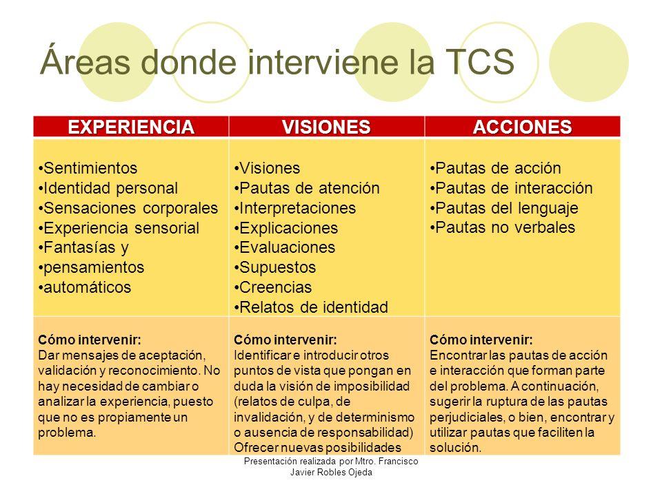 Áreas donde interviene la TCS