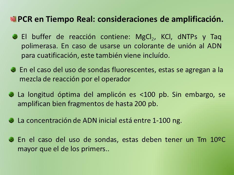 PCR en Tiempo Real: consideraciones de amplificación.