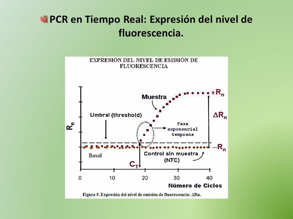 PCR en Tiempo Real: Expresión del nivel de fluorescencia.