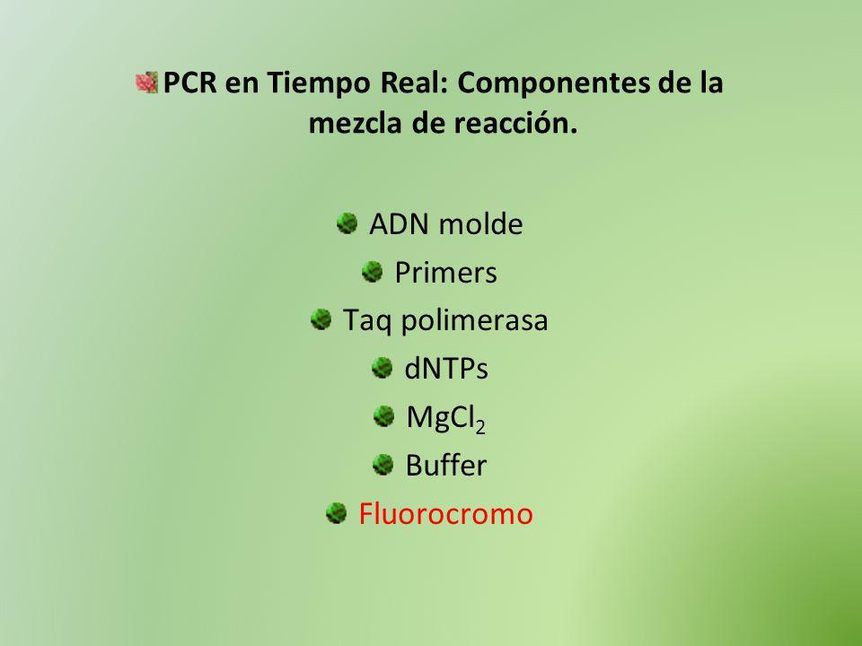 PCR en Tiempo Real: Componentes de la mezcla de reacción.