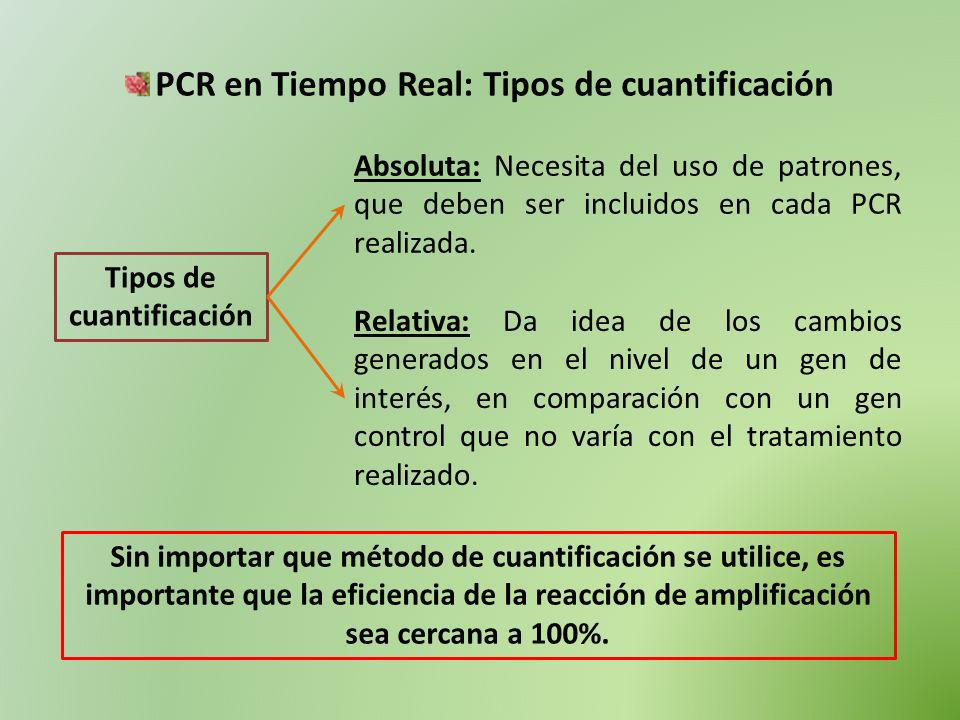 PCR en Tiempo Real: Tipos de cuantificación Tipos de cuantificación