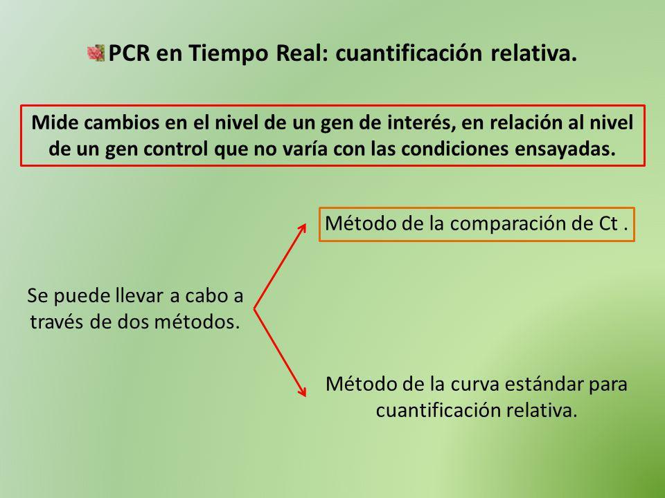 PCR en Tiempo Real: cuantificación relativa.
