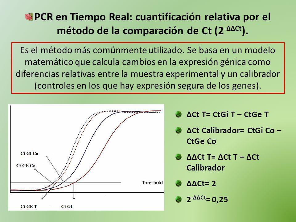 PCR en Tiempo Real: cuantificación relativa por el método de la comparación de Ct (2-ΔΔCt).