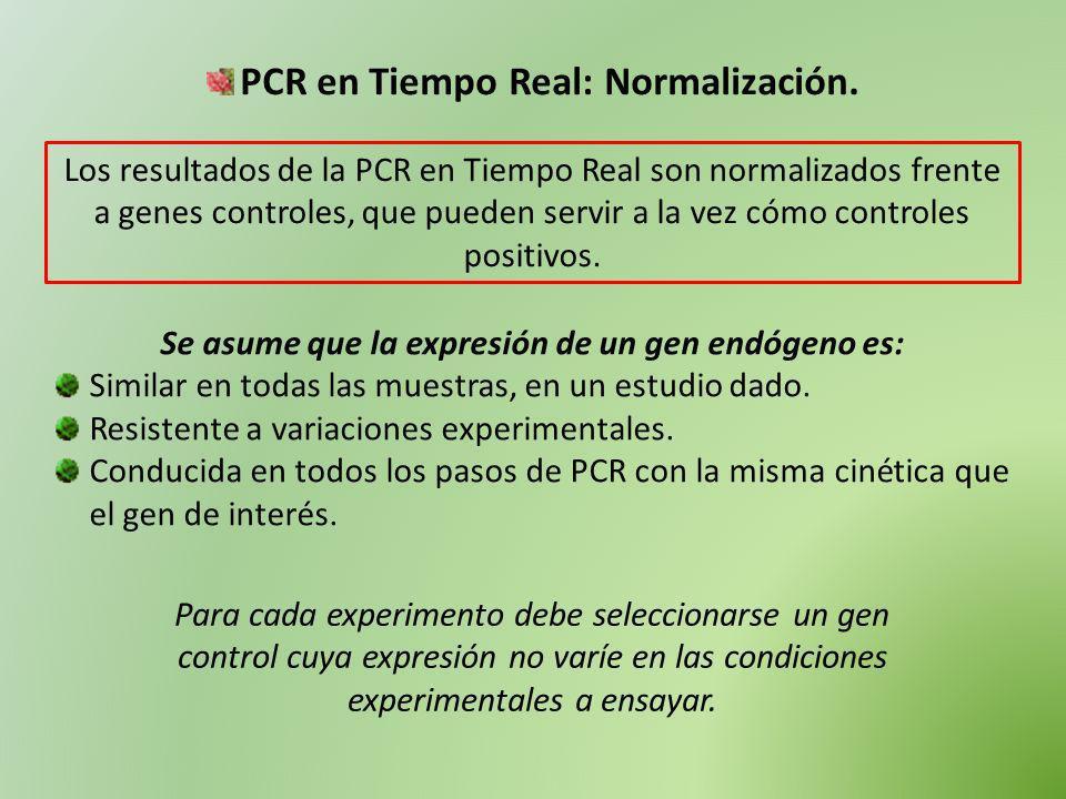 PCR en Tiempo Real: Normalización.