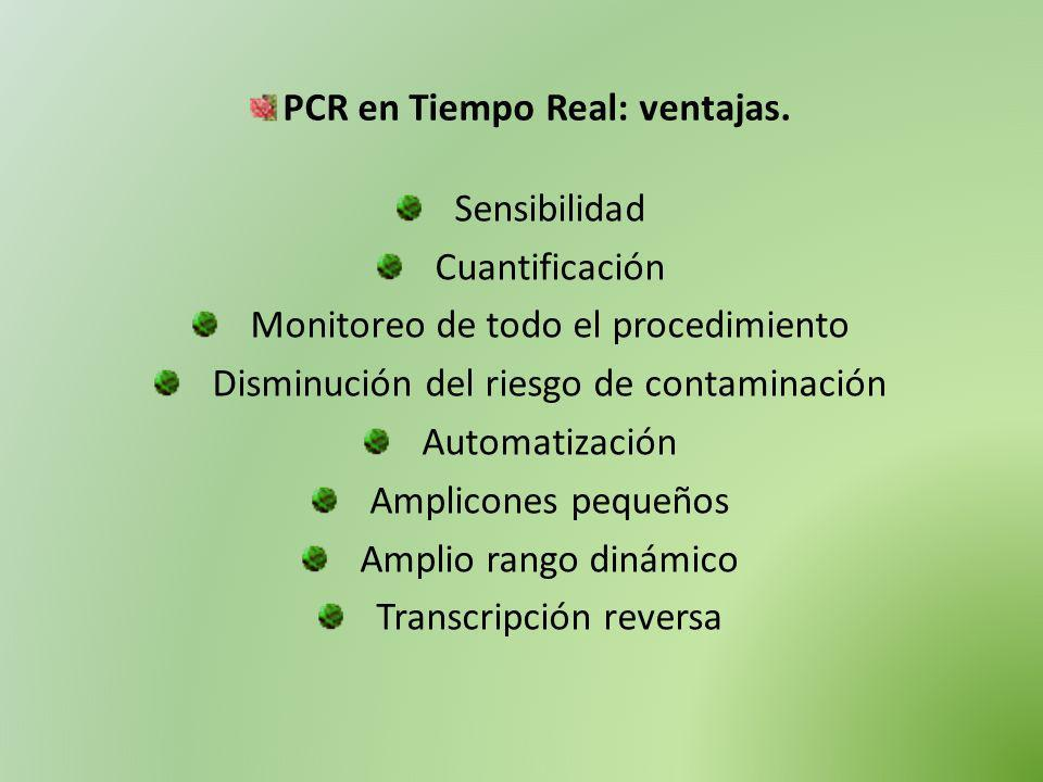 PCR en Tiempo Real: ventajas.