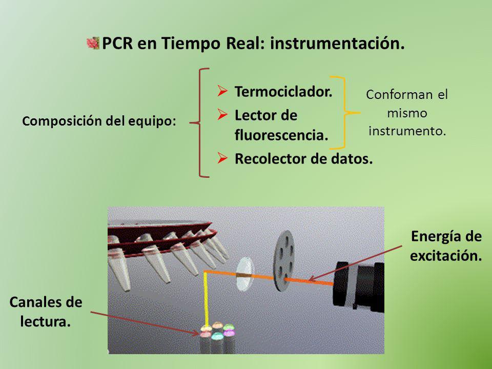 PCR en Tiempo Real: instrumentación. Composición del equipo: