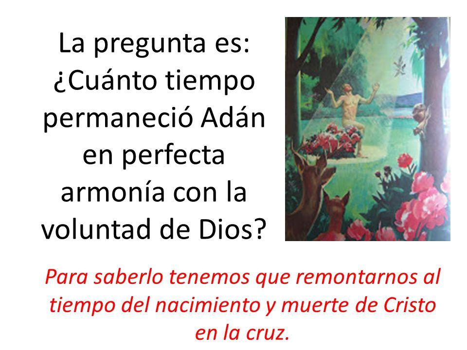 La pregunta es: ¿Cuánto tiempo permaneció Adán en perfecta armonía con la voluntad de Dios