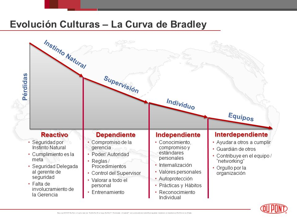 Evolución Culturas – La Curva de Bradley