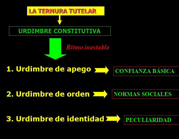 URDIMBRE CONSTITUTIVA