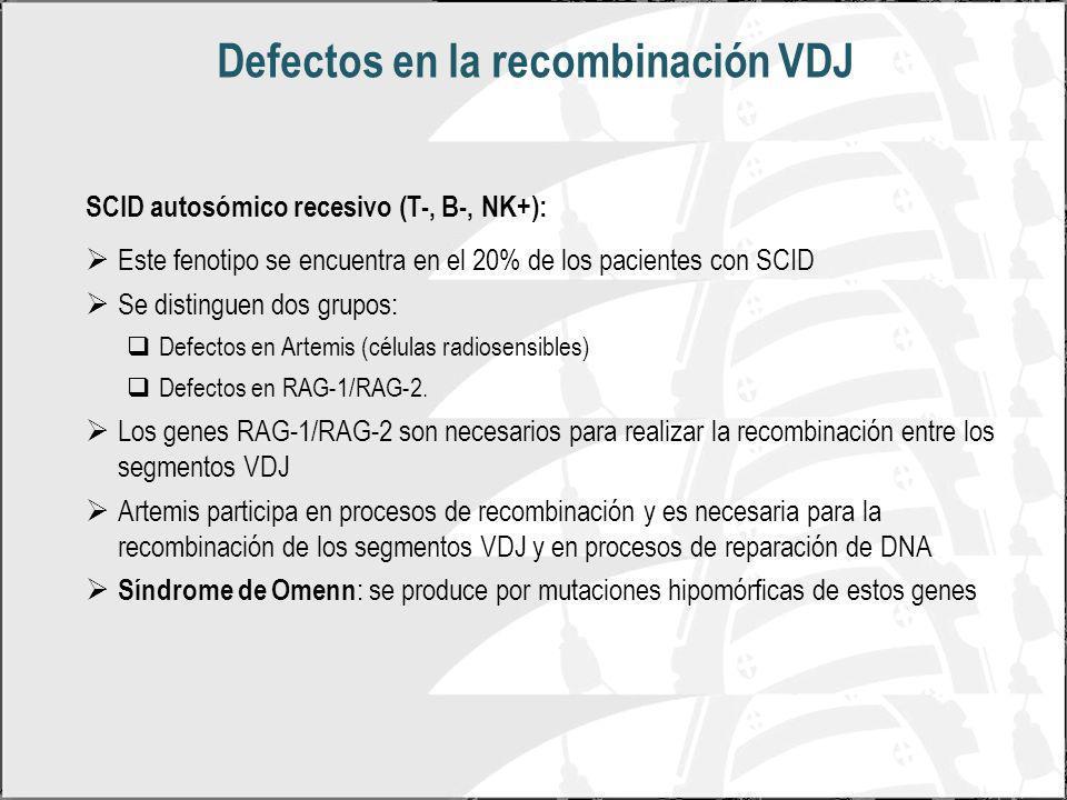 Defectos en la recombinación VDJ