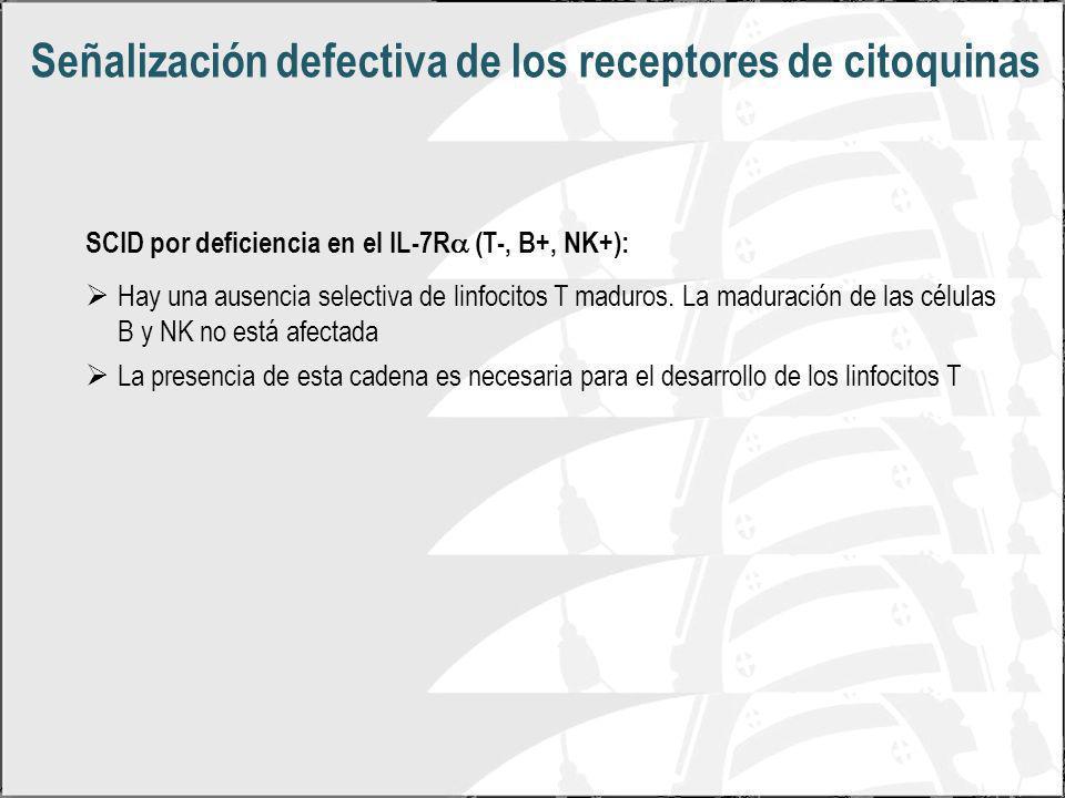 Señalización defectiva de los receptores de citoquinas