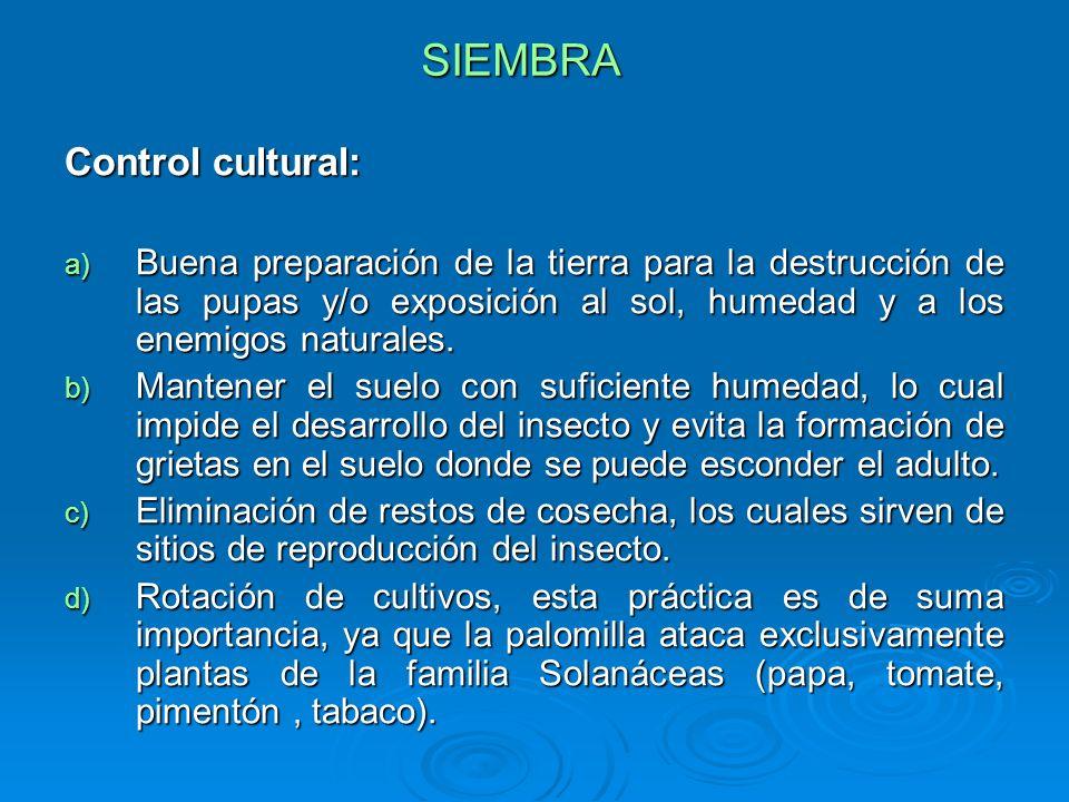 SIEMBRA Control cultural: