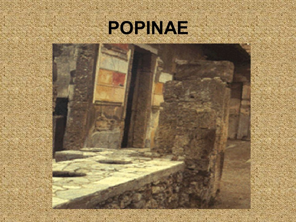 POPINAE