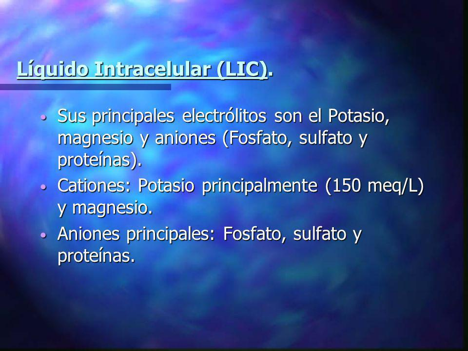 Líquido Intracelular (LIC).