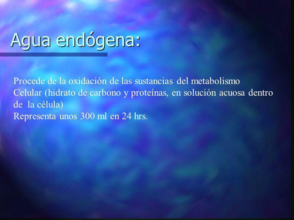 Agua endógena: Procede de la oxidación de las sustancias del metabolismo. Celular (hidrato de carbono y proteínas, en solución acuosa dentro.
