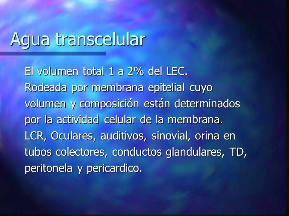 Agua transcelular