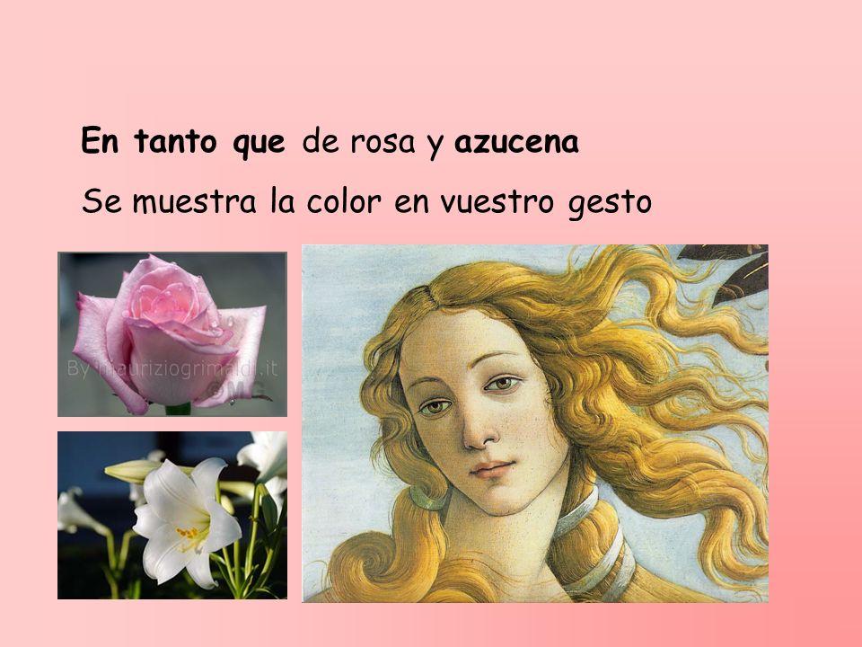 En tanto que de rosa y azucena